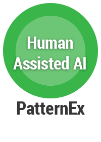 Human Assisted Artificial Intelligence AI